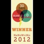 NanoWinner